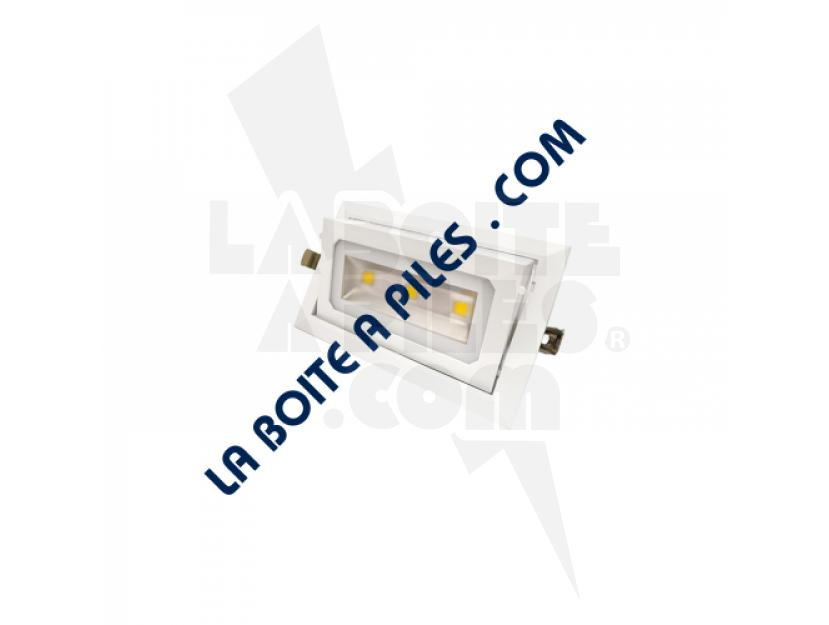 SPOT LED ORIENTABLE - 30W + ALIMENTATION ELECTRONIQUE img.jpg